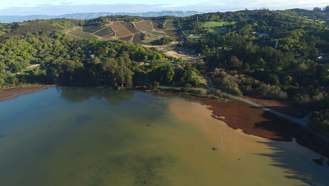 Sand Hill Farm, January 2016 (showing sediment plume and nutrients flowing into Elkhorn Slough Reserve). ESF's goal is to develop a sustainable, certified organic farm on the gentle slopes and to return the steep upper slopes to habitat and ground water conservation. Courtesy of the Elkhorn Slough Foundation.