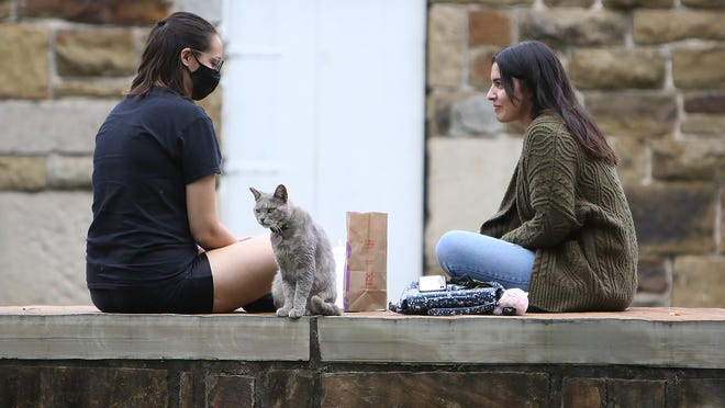 Julia Riviera, left, and Natalie Ortiz are joined for lunch by a roaming cat, Friday, Sept. 25, at the Fort Smith National Historic Site as they enjoy the cooler weather in the area.