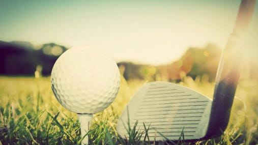 The Golf Coaches Association of Wisconsin announced their academic all-state team on Tuesday; five area golfers were recognized.