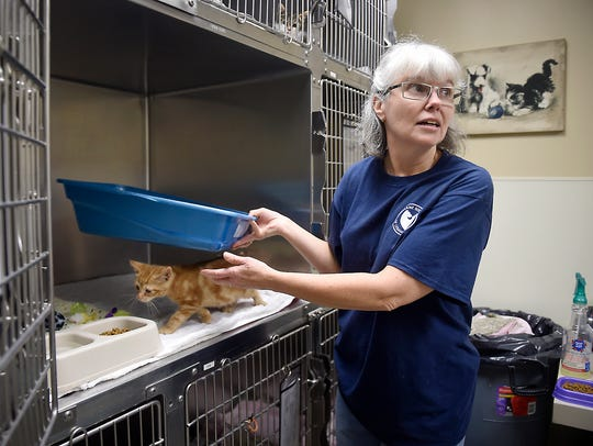 Humane Society of Lebanon County staff worker Joan