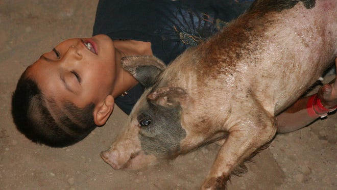 This youngster hugs a pig he had just caught during the 2012 Pig Scramble.
