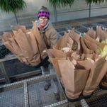 ARC Gateway staffer, Jerri Cole starts filling the ARC Gateway greenhouses with the first shipment of poinsettias for the organization's annual holiday plant sale. The florist-grade poinsettias will go on sale Dec. 1 and come in a variety of colors.