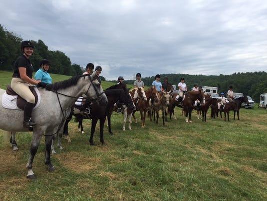 635729341035105659-Horses1