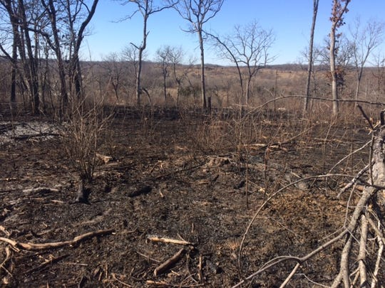 Fifteen acres of grass and trees burned Saturday after being ignited by tracer bullets fired at the Scrivner Road Conservation Area in Cole County.