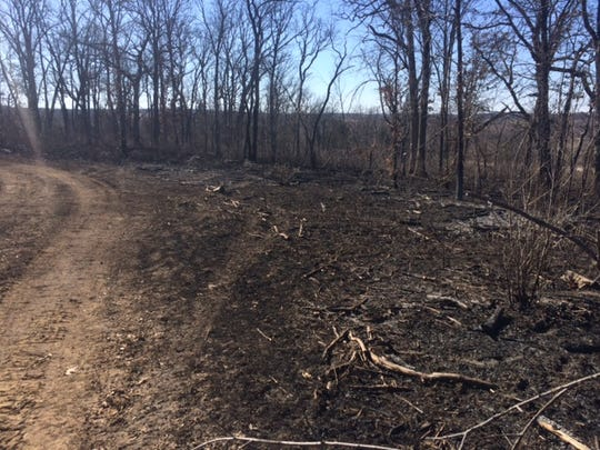 Tracer bullets ignited this forest fire Saturday at the Scrivner Road Conservation Area in Cole County.