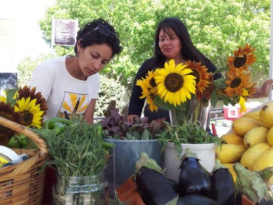 Cristina Dominquez, left, farm operations manager for