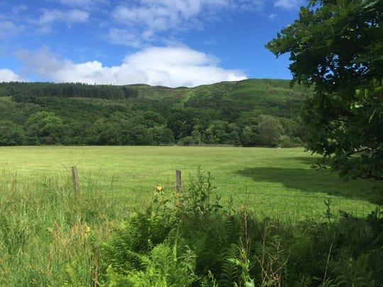 Scotland Hillside