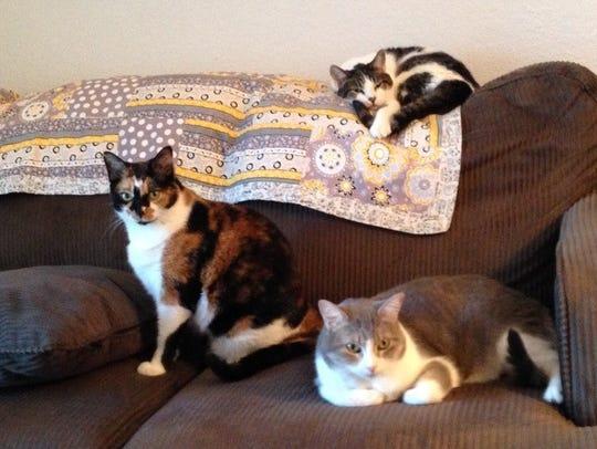 Lili, Ella and Rilee.