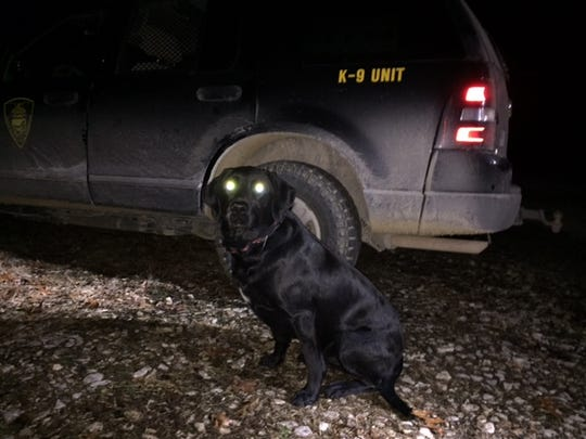 Derby, a black Labrador, has at least three rescues in three years with the Indiana Conservation Office.