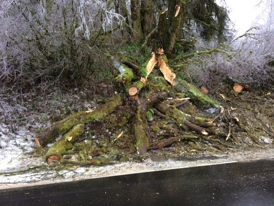 Fallen trees closed Highway 22 near Grand Ronde for several hours Friday morning.
