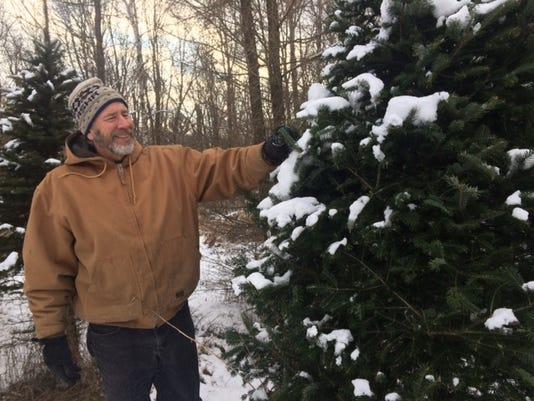 Christmas tree 1.JPG