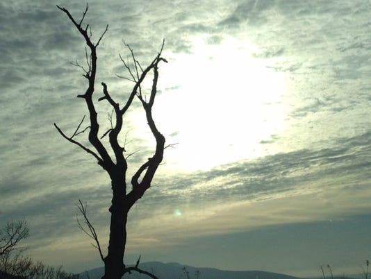 636199384866885393-LDN-DW-011417-winter-sky.jpg