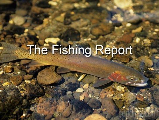 636203698896075550-ipad-fishing-report.jpg