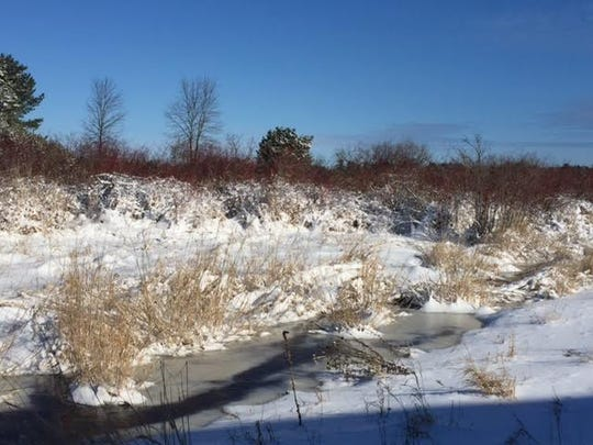 New fallen snow on the grounds of Woodland Dunes Nature Center and Preserve in Two Rivers.
