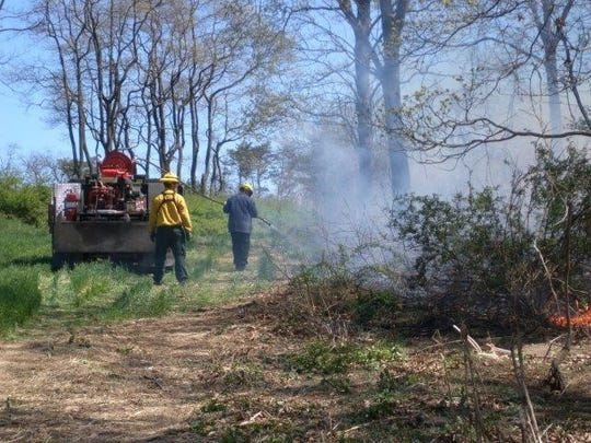The Pennsylvania Game Commission will be burning some underbrush to improve habitat in some game lands.