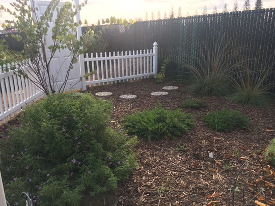 The nine garden beds and ten fruit trees in the Master
