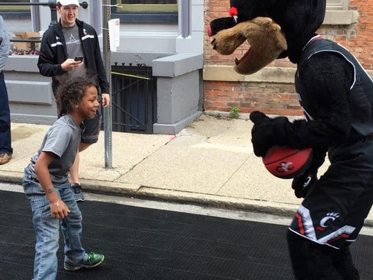 The UC Bearcat challenges one of the participants one-on-one at the 2016 Dribblethon.