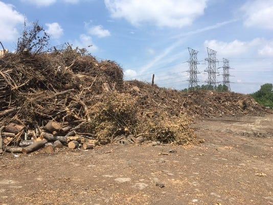 636332149619874155-wood-debris.jpg