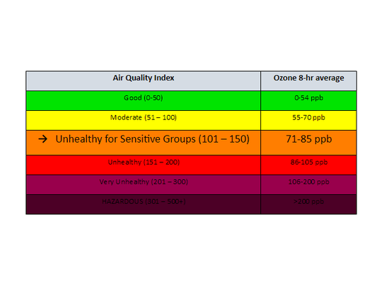 The Indiana Department of Environmental Management has issued an Air Quality Action Day for Saturday, June 20. Ozone pollution is expected to reach unhealthy levels for some Southwestern Indiana residents.