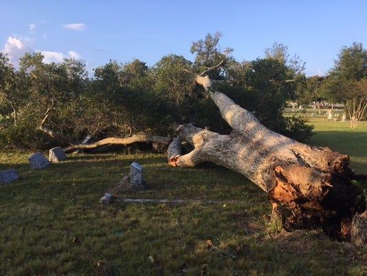 636431775449649378-Hurricane-Nate-damage.jpg