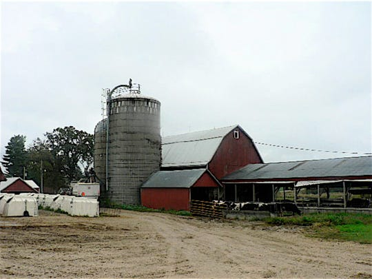 The old dairy barn now houses heifers.
