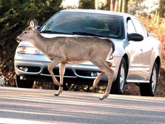 636443718458283858-Deer-Car-AccidentAP.jpg