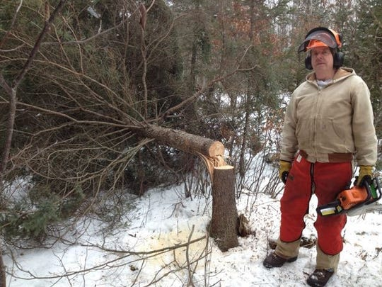 Sam Hudnutt stands beside a black spruce he felled to create horizontal cover for snowshoe hare. Hudnutt is a volunteer with Michigan United Conservation Clubs' On the Ground program.