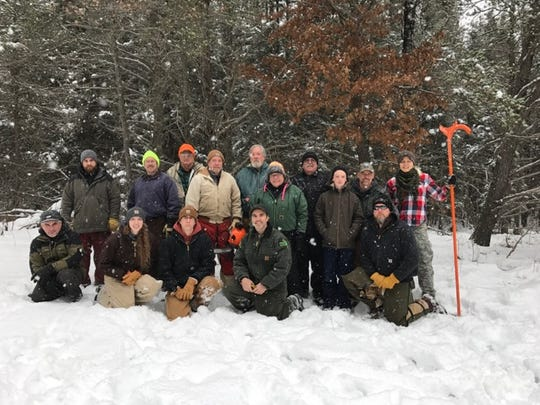 "Volunteers with the Michigan United Conservations Clubs' ""On the Ground"" program felled about 250 trees to improve habitat for snowshoe hare in Grayling State Forest."