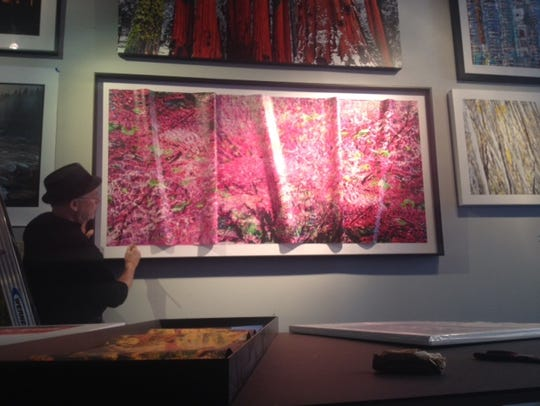 "Josh Mitchell's large photo, ""Swimming with the Redbuds,"""