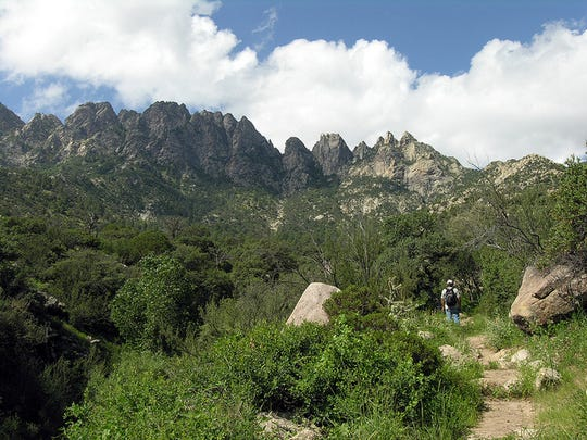 Hikers can get a great perspective of the Organ Mountains by hiking the Pine Tree National Recreation Trail, originating from the BLM Aguirre Spring Campground near White Sands Missile Range.