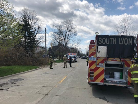 South Lyon firefighters at the scene of downed tree