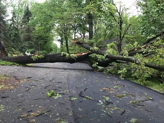 A large tree blocks Woodcrest Road in Parsippany. May