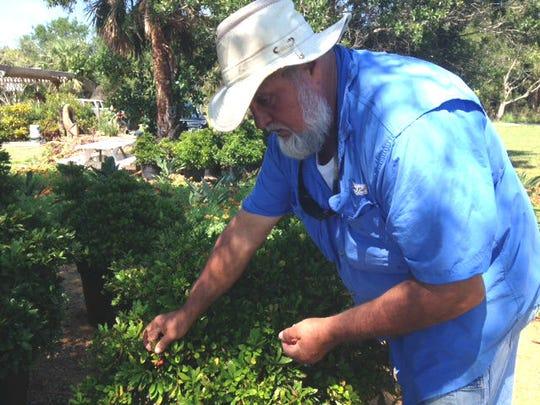 Joel Bray, who runs Shining Light Garden in Vero Beach,