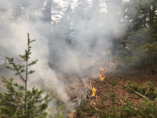 Pepper Springs Fire 1