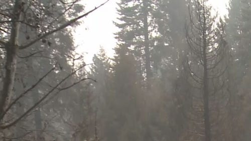 King Fire - Friday images