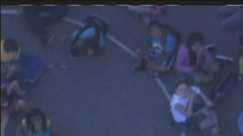 PHOTOS: Students sent home from Md. school due to feral cat