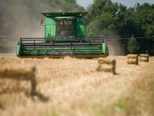 CHL 0721 Grain Harvesting
