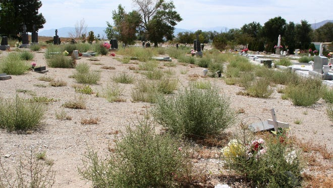 Weeds accumulated in 2014 at Valley View Cemetery, prompting a community effort for a work day to remove them. This year, Yerington has assigned three members of its summer seasonal staff to remove weeds.