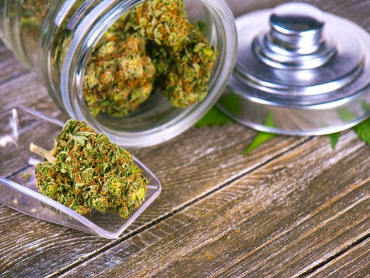 A tipped over clear jar packed with cannabis buds that's lying next to a clear scoop that's holding a large cannabis bud.