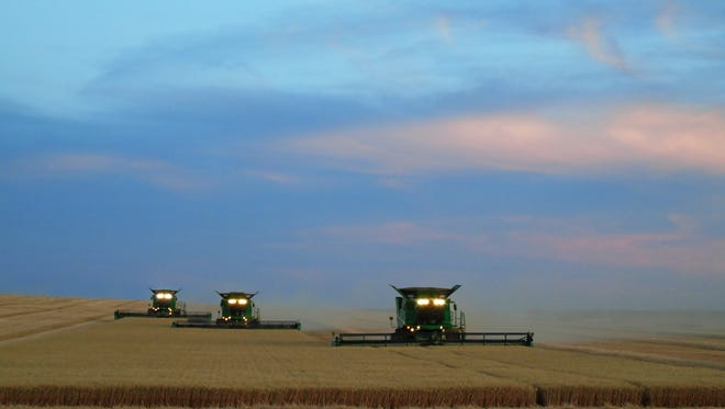 Combines harvest wheat west of Dutton. On Thursday Sen. Tester urged White House trade secretary Peter Navarro to come to Dutton to gain an accurate perspective on how trade tariffs are hurting U.S. farmers.
