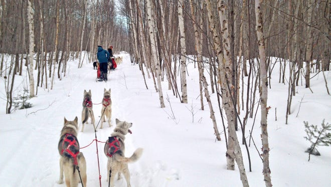Jen Dale, kennel manager and guide for Wolfsong Adventures and Alexa Nelson, marketing and events assistant at the Bayfield Chamber and Visitor Bureau on a trail in the Bayfield area.