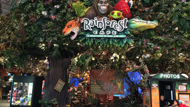 Eat in the rainforest: Rainforest Cafe is a restaurant that feels like a theme park, with tables surrounded by jungle creatures that come to life periodically during your visit. There's also a gift shop and multiple aquariums to watch tropical fish. Menu items include burgers, fish, chicken and pasta. rainforestcafe.com