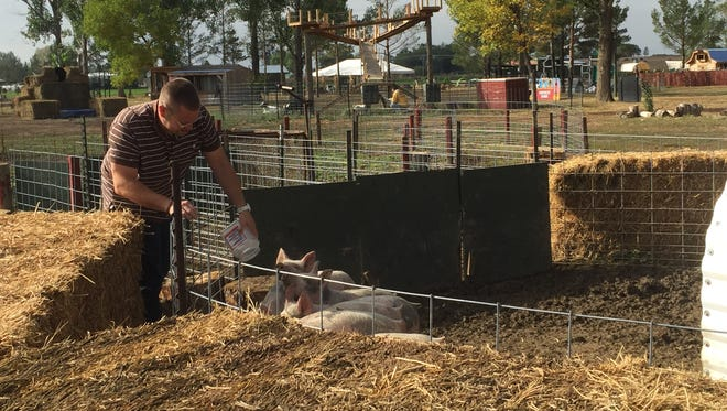 Jeremiah Guerrero, 34, greets the racing piglets at Harvest Farm. Guerrero graduated from Harvest Farm's rehabilitation program after more than a decade of selling and using methamphetamines.