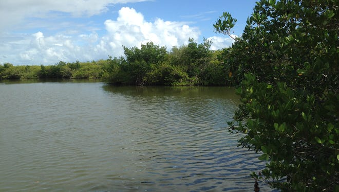 In addition to the 12 miles of trails for hiking and biking, Ulumay in Merritt Island also offers 4.5 miles of paddling trails.
