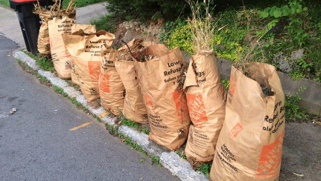Paper bags at curb.