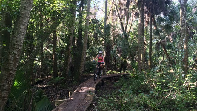 The Turkey Creek mountain bike trails are part of the Malabar Scrub Sanctuary lands, and offer six miles of rugged riding.