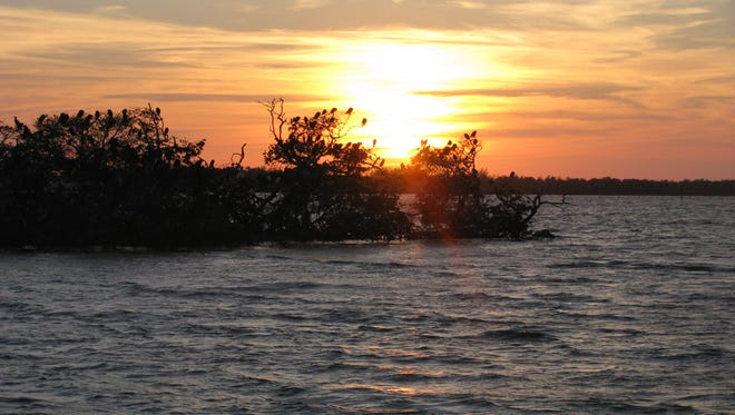 The sun sets on Rookery Bay during a Conservancy of Southwest Florida guided eco-tour.