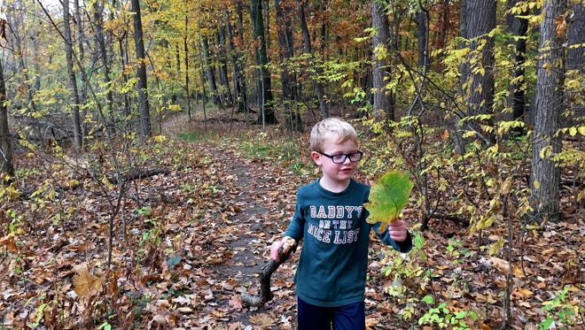 Sam Shamus, 4, on a grand adventure hiking through the woods with his family on Grosse Ile. This photo is among those that could be lost in the digital abyss if it isn't printed or if efforts aren't made to ensure it survives a hard-drive crash or technology change.