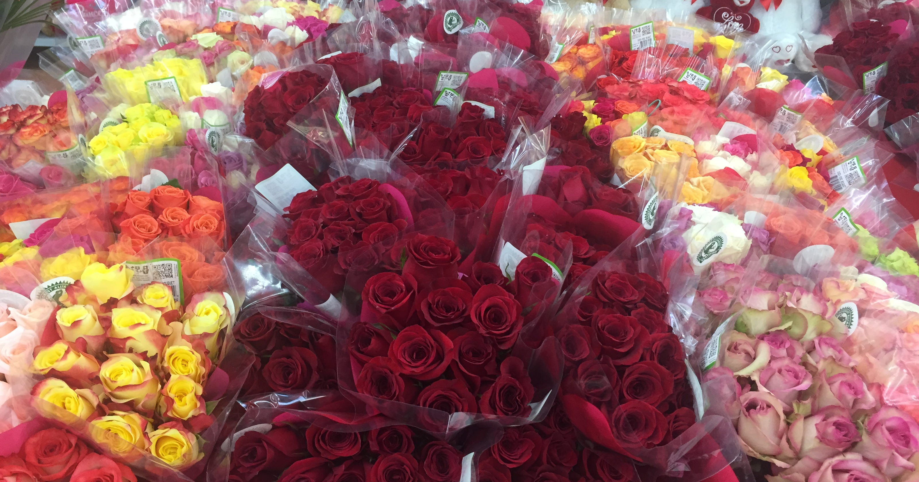 Valentines Day At Trader Rose >> 10 Places In Nashville To Buy A Dozen Roses For 25 Or Less