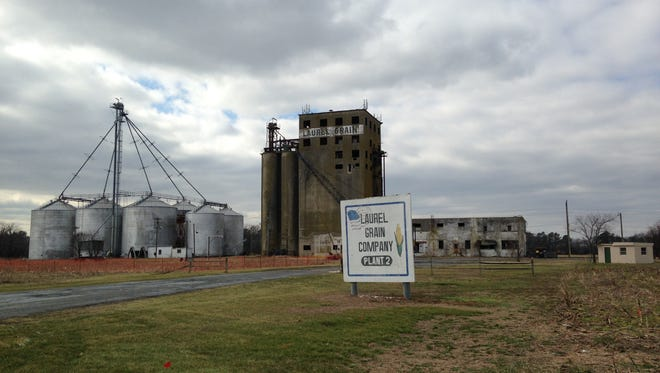 Proximity Malt, a Wisconsin-based startup, plans to transform these aging grain elevators south of Laurel into a processing plant that would make malted grain for breweries.